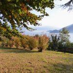 Comer See Pianello del Lario Stein Haus mit Garten